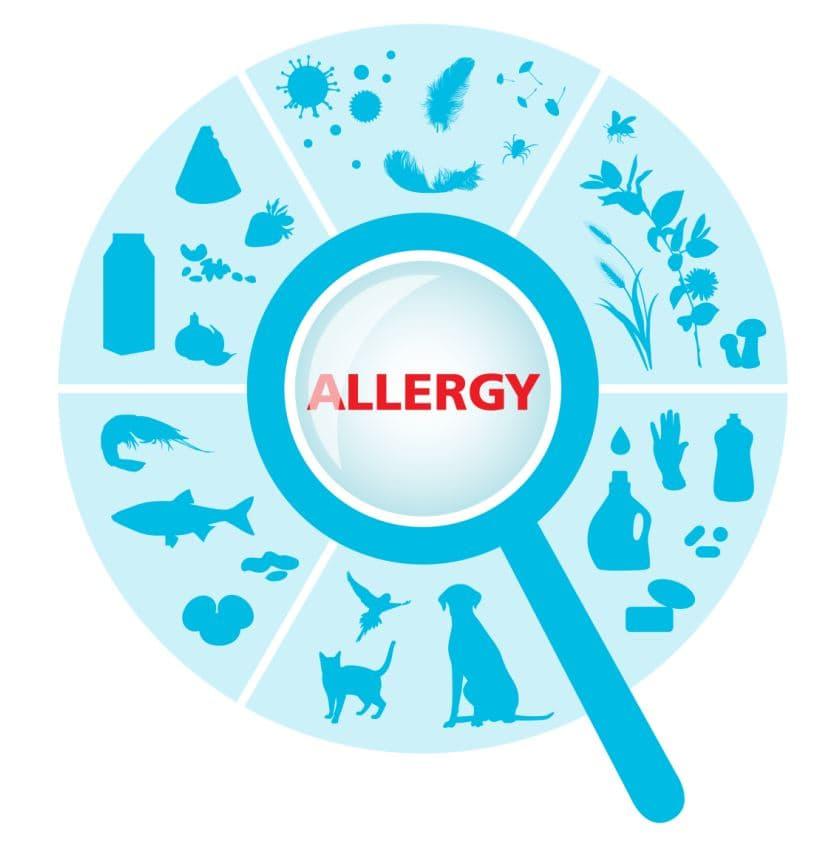 Диагностика аллергии: кожные пробы vs анализ крови на аллергены